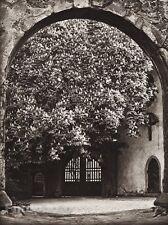 1924 Vintage GERMANY Nabburg Arch Doorway Architecture Photo Art By HIELSCHER