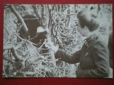 POSTCARD ROYALTY HRH THE PRINCESS ROYAL AT MARWELL ZOO 1982