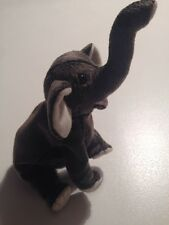 Ty Beanie Baby Trumpet - (Elephant 2000) No Hang Tag