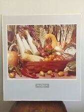 Mid Century Kodak Fall Festive Ektacolor Color Photo By Photographer Rick Warner