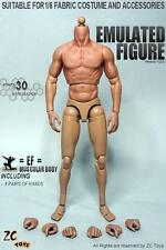 IN STOCK ZC Toys 1/6 Scale 2.0 Muscular Figure Body Similar to Hot Toys TTM19