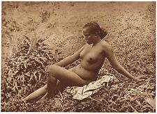1920's Old Vintage Asian Java Indonesian Female Nude Model Photo Gravure Print c