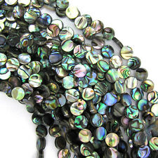 "8mm abalone shell coin beads 16"" strand"