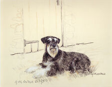 SCHNAUZER Mini Salt and Pepper DOG FINE ART LIMITED EDITION PRINT