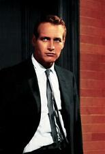 Paul Newman Poster24in x 36in