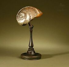 Tiffany Studios Original Signed Nautilus Shell Table Lamp Ex Mallory Family NYC