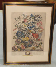 Williamsburg Hand Tinted FURBER Engraving May Floral Flowers FRAMED