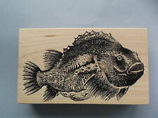 100 PROOF PRESS RUBBER STAMPS BIG FAT FISH NEW STAMP