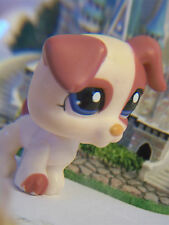 ✵Littlest Pet Shop Dog #1200 Cream Magenta Jack Russel Terrier Puppy Blue Eyes ✵