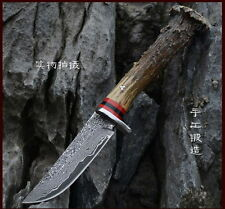 Collection Antler Handle Damascus steel handmade hunting bowie knife Knives DB26