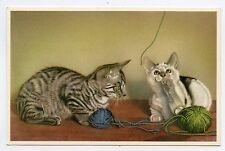Jeux de chats . Cats . Gato . Katze