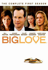BIG LOVE - SEASON 1 - DVD - REGION 2 UK