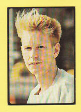 PEOPLE - PANINI - POP STARS - SMASH HITS COLLECTION - ANDY  FLETCHER
