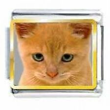 DAISY CHARM by JSC Picture Italian Charm  CAT FACE