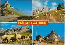 PASSO GIAU - VEDUTINE - COLLE S.LUCIA (BELLUNO) 1988