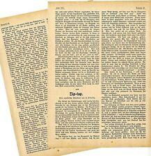 H. Hidassy Tip-top die Toilette des Pferdes Eine equestrische Plauderei von 1911