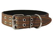 "Genuine Leather Dog Collar, Padded, 1.5"" Wide. Fits 14""-18"" Neck Size, Amstaff"