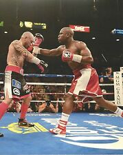 FLOYD MAYWEATHER JR 8X10 PHOTO BOXING PICTURE