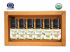 Organic Essential Oil Set 6 x 5 ML TeaTree Frankincense Lemon Rosemary Plantasia