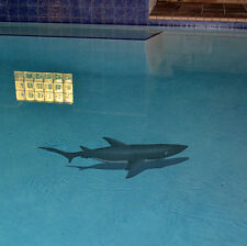 "Mosaic Shark w/ shadow for Swimming Pool or Walll - 61"" x 24""  - FREE SHIPPING"