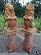 Pair Vintage Gold English Stone Standing Lion Garden Statues On Roman Plinths