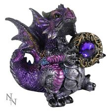 NEMESIS NOW U1255D5 AMETHYST DRAGON FIGURINE BEAUTIFUL FANTASY STATUE GOTHIC