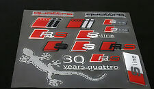 1 Set 3D Epoxy Car Stickers Gecko RS S Line Quattro Window Door Decal for Audi