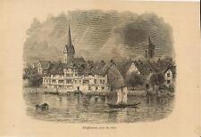 Stampa antica Veduta di SCHAFFHAUSEN Svizzera Switzerland 1879 Old Print