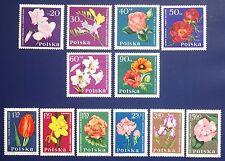 Poland -1964 Set of 12 GARDEN FLOWERS - MNH