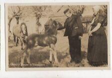 Oostelijk Zeeuwsch Vlaanderen Vintage RP Postcard 919a