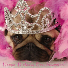 Granddaughter Birthday Card - Pink Princess Pug with Tiara  FREE 1st Class Post