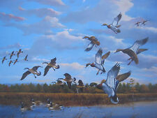 "Ducks Unlimited ""Sunrise At Mattamuskeet"" Signed and Numbered Print 23 x33"