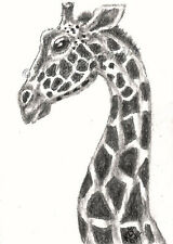 Giraffe aceo EBSQ Loberg wildlife Mini Art African zoo Animal Charcoal drawing