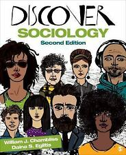 DISCOVER SOCIOLOGY Second Edition by William J. Chambliss, Daina S. Eglitis VGUC