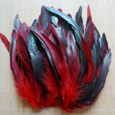 100 Lots 8-15cm Beautiful Multi color Rooster Tail Natural Feather red ho