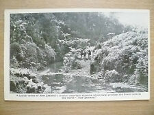 Postcard-New Zealand's Crystal Mountain Streams-produce Finest Lamb in the World