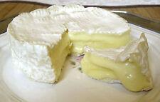 Camembert Cheese Making Kit Blue Mold Vegetable Rennet Penicillium Candidum