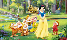 Snow white vinyl photography Background Backdrop photo props 7X5FT DSN34
