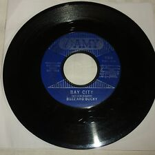 GARAGE / SURF 45 RPM RECORD - BUZZ AND BUCKY - AMY 924
