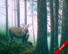 WILD MOOSE BULL W ANTLERS IN GREEN FOREST ANIMAL PAINTING ART REAL CANVAS PRINT