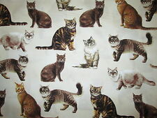 CATS REALISTIC CAT KITTY CREAM COTTON FABRIC FQ
