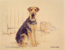 "AIREDALE TERRIER DOG FINE ART LIMITED EDITION PRINT - ""Tough as Old Boots"""