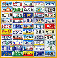COMPLETE SET OF USA LICENSE PLATES FROM ALL 50 STATES + BONUS PLATE