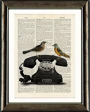Viejo Libro Antiguo página Art Print-Vintage TELÉFONO Y Diccionario De Aves Pared Arte