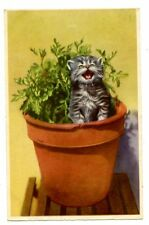 vintage cat postcard cute cat kitten singing meowing in large plant pot