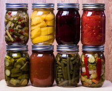 24 Books on Canning, Preserving, Pickling, Dehydrating Foods on CD