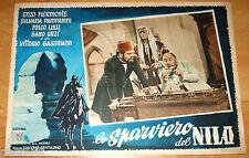 fotobusta originale LO SPARVIERO DEL NILO Vittorio Gassman Folco Lulli 1950
