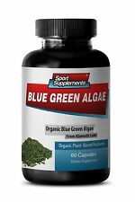 Immune System Booster - Organic Blue Green Algae 500mg - Fast Weight Loss 1B