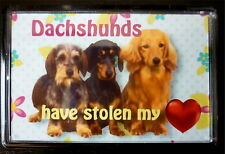 Dachshund Gift Dog Fridge Magnet 77x51mm Free UK Postage Xmas stocking filler