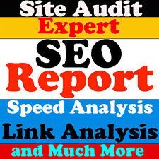 Expert SEO Report for Your Website SEO-Website Traffic+Site Audit+Speed Analysis